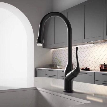 K6048 450x450 - Vòi rửa chén nóng lạnh inox 304 bóng K6048